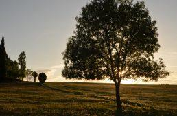 5 reflexiones de un año como expatriado en Francia